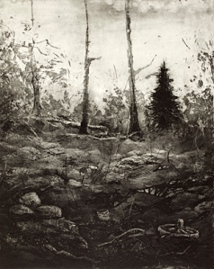 svensson_mats_2_the_-forgotten_forest_II_etching_drypoint